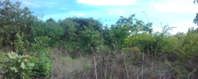 Bare Land For Sale in Katuba